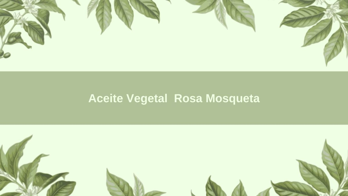 Aceite Vegetal BIO Rosa Mosqueta