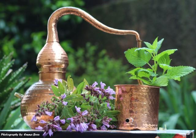 alambique-aceite-esencial-geacosmetics