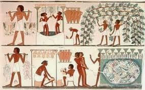 geacosemtics-faraones-comino-negro