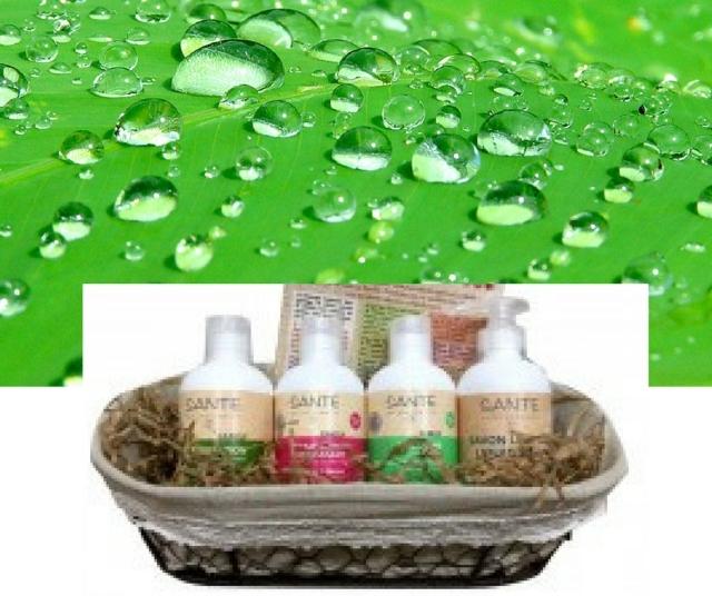 regalo-dia-madre-higiene-eco